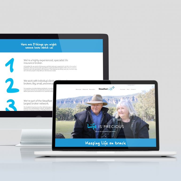 Website Design for Steadfast Life